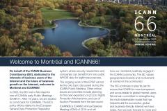 ICANN 66
